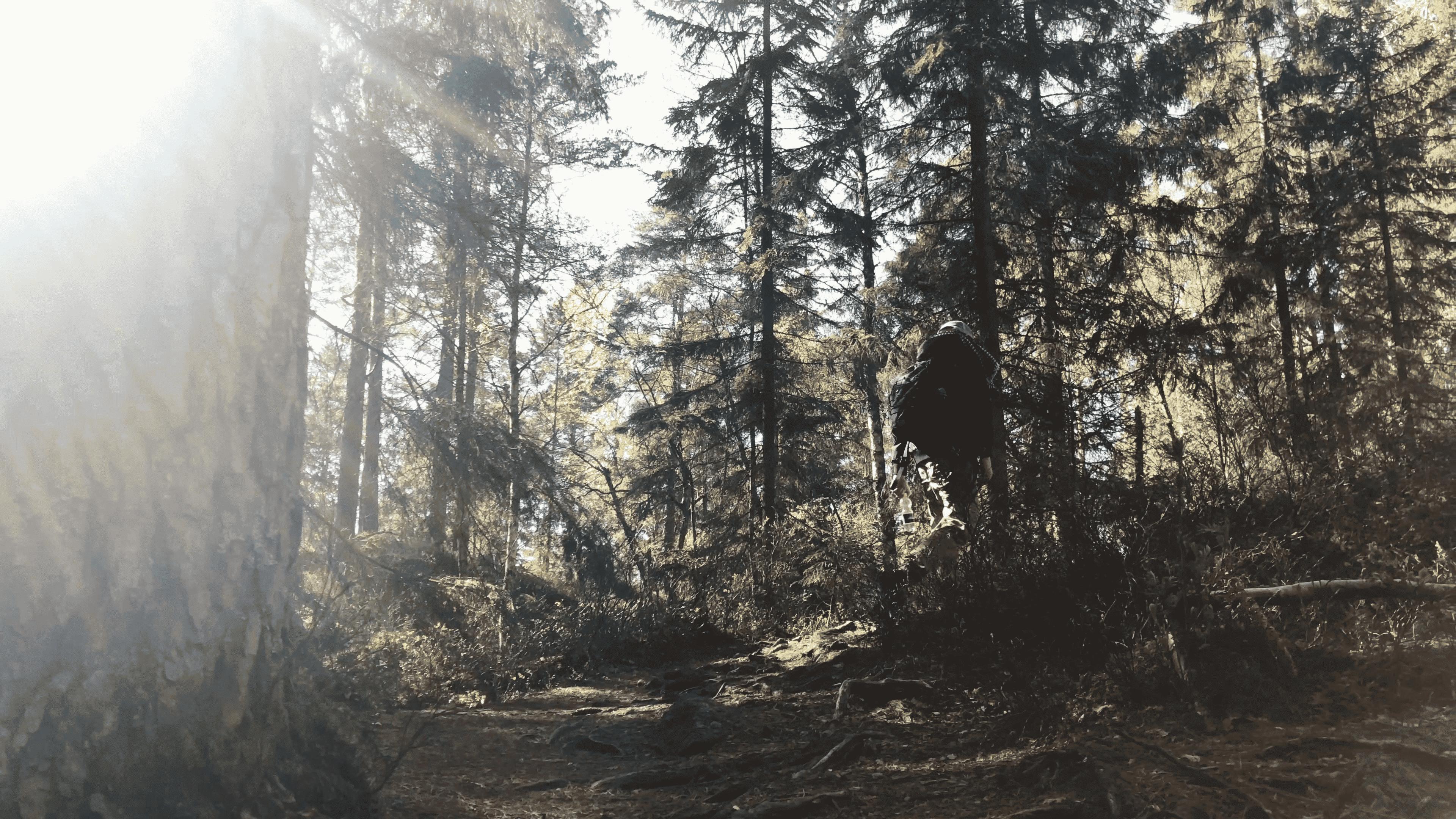 Tivedens National Park - Tärnekullerundan
