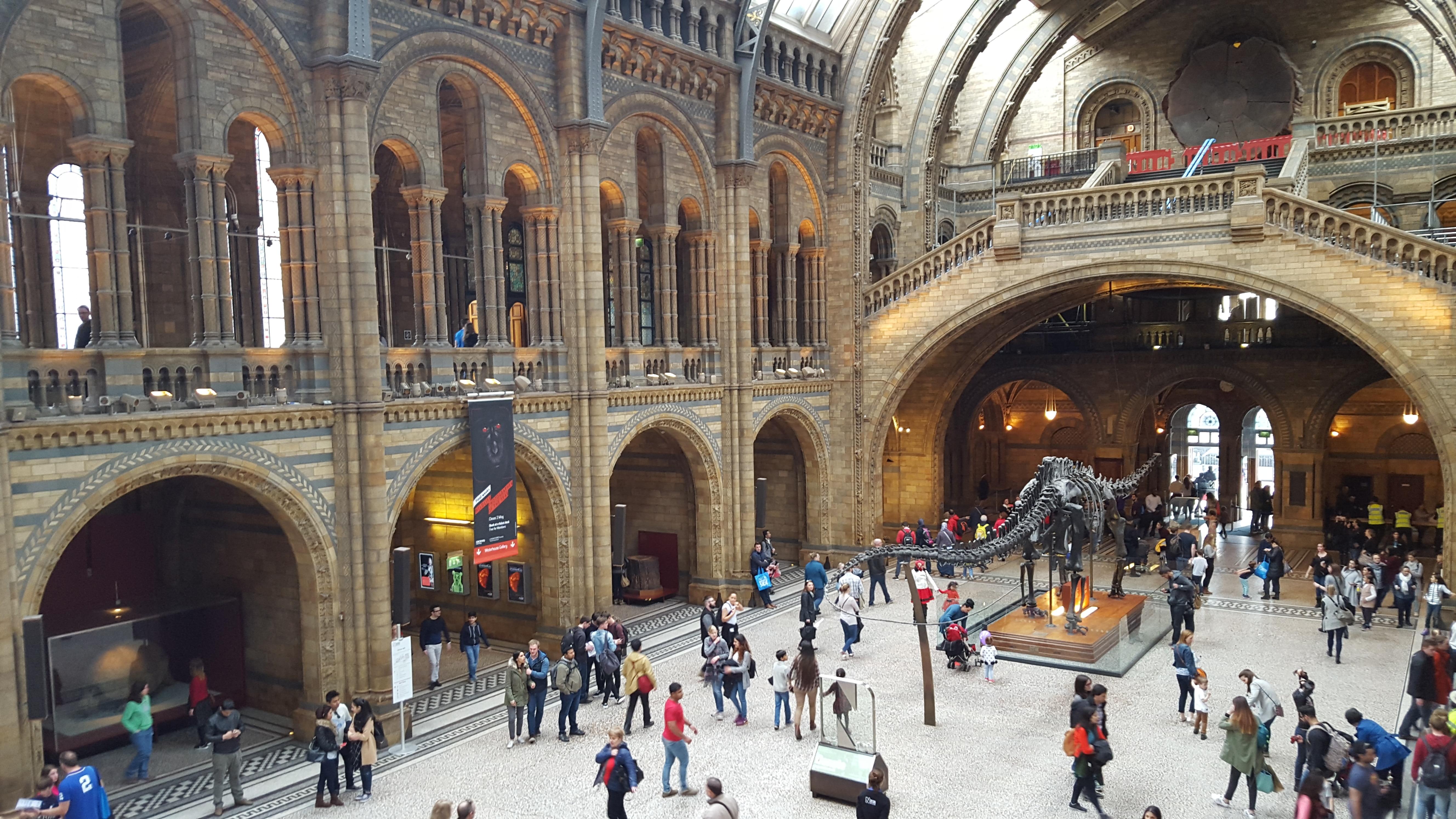 Londres - Le hall du Natural History Museum