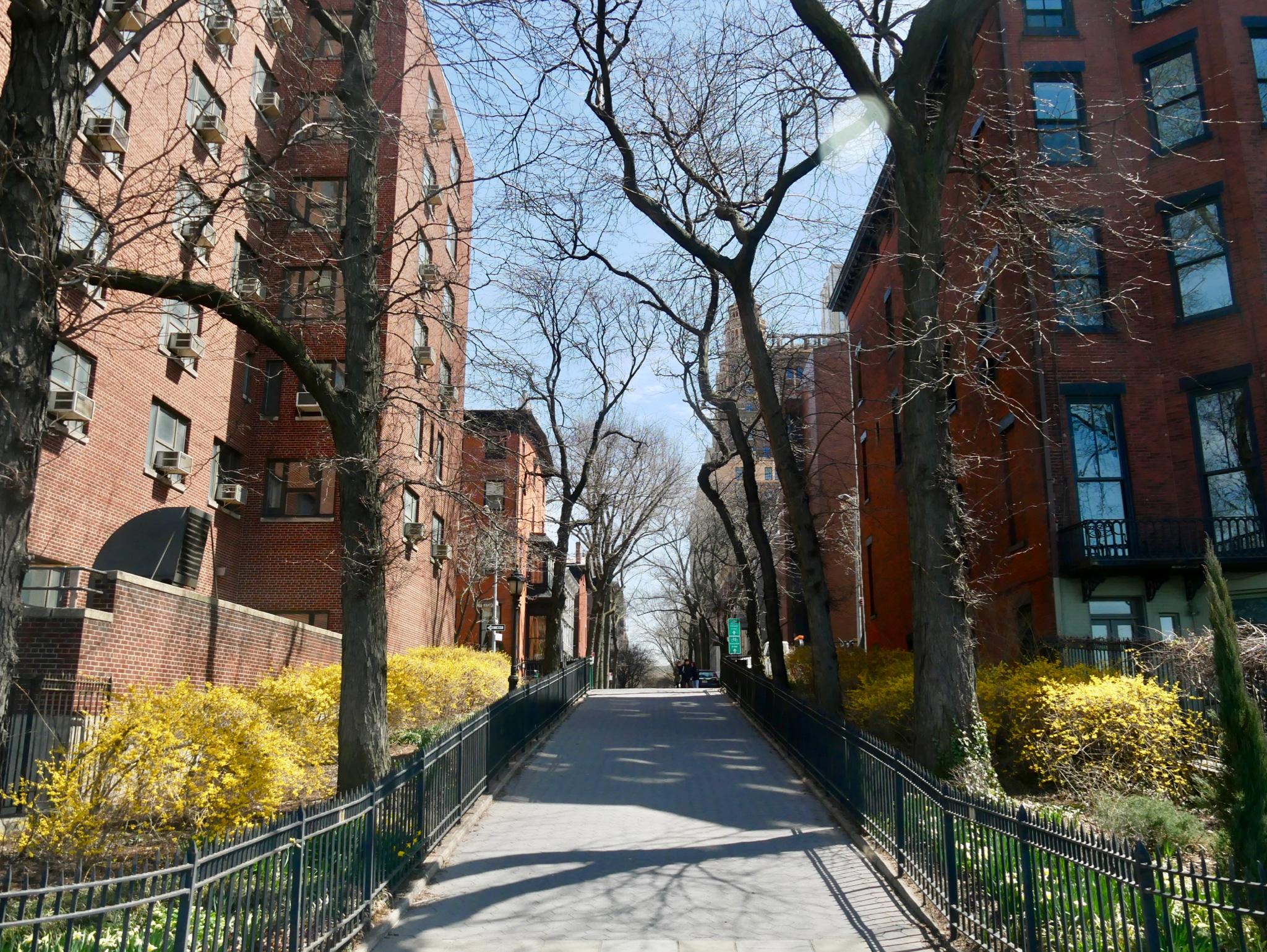 New York - Jour 3 - Découverte des quartiers de Brooklyn et Dumbo 2