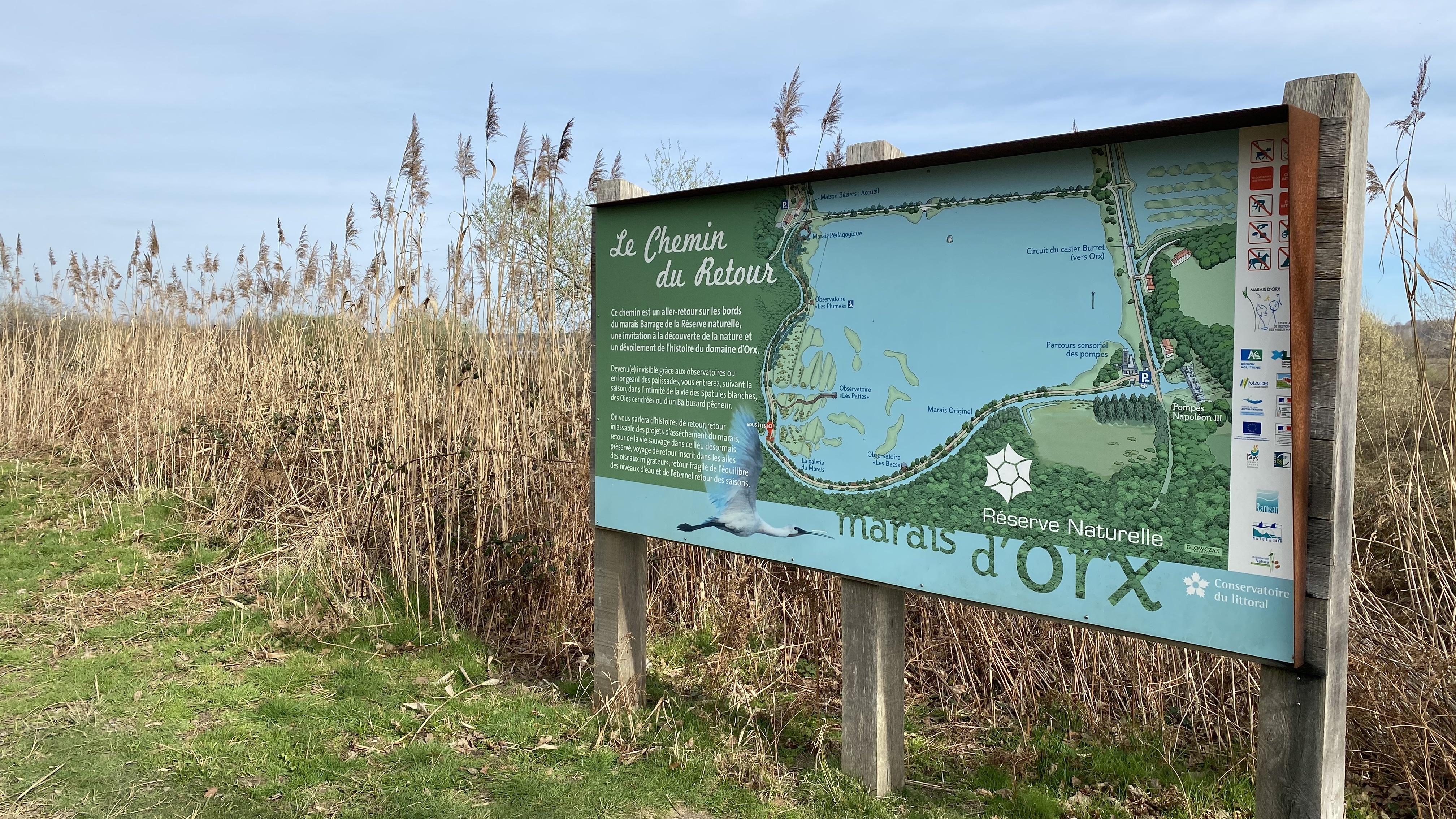 La Réserve Naturelle du Marais d'Orx - Chemin du retour