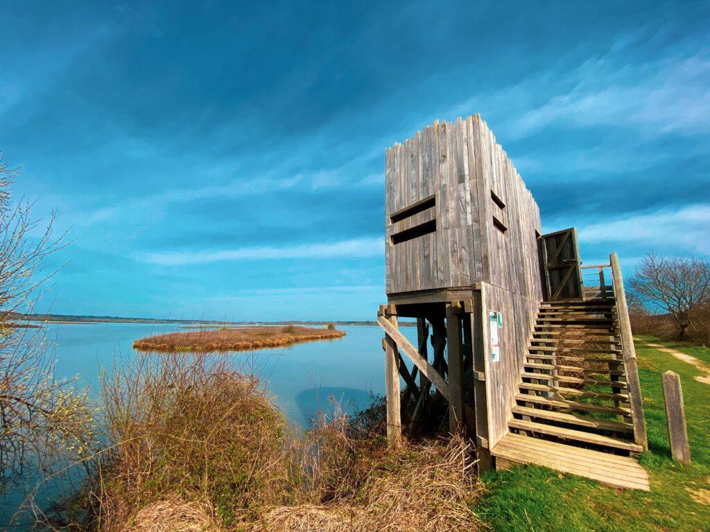 Réserve Naturelle du Marais d'Orx - Observatoire des Becs