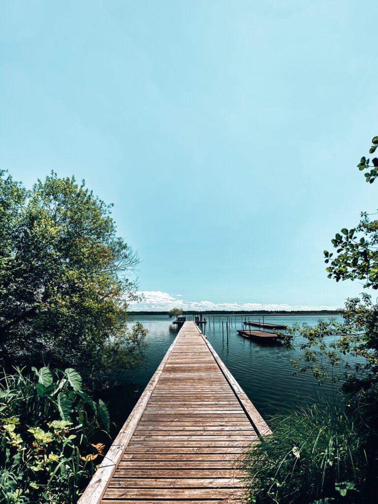 Passerelle de l'étang de Souston